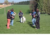 http://www.weisse-schaefer.at/archiv/Bilder/ZTP_05/DSCF0116.jpg